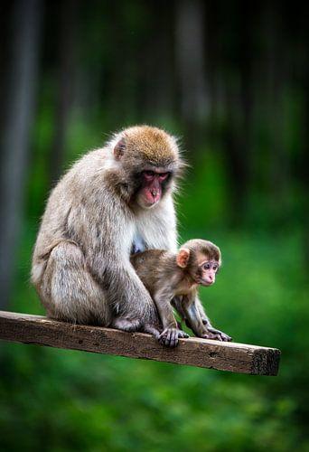 Moeder en kind van