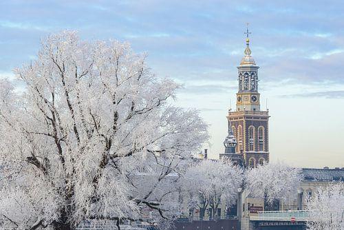 efrorene Bäume mit dem Nieuwe Toren (Neuer Turm) in Kampen
