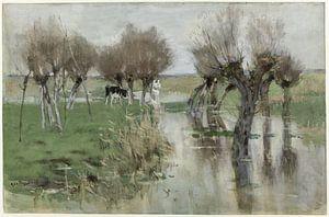 Hoog water in het weiland, Geo Poggenbeek