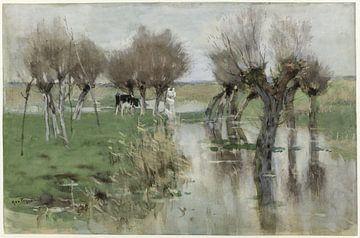 Hochwasser auf der Weide - Geo Poggenbeek