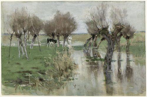 Hoog water in het weiland, Geo Poggenbeek van