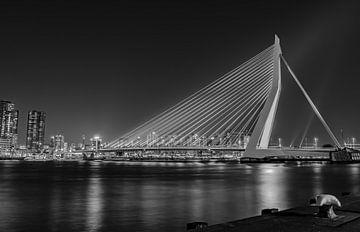 Skyline Rotterdam Erasmusbrücke schwarz-weiß von Marjolein van Middelkoop