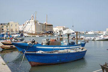 Vissersboten in de haven van Trani van Berthold Werner