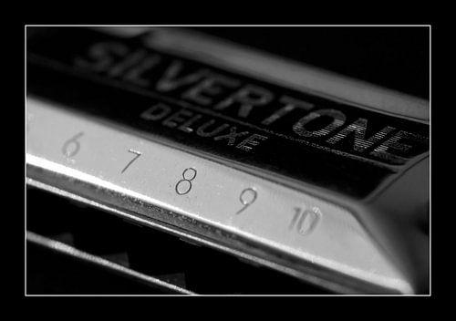Silver Tune van