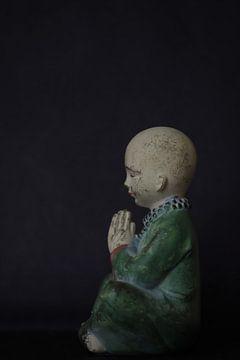 Little Buddha 2 van Sonja Onstenk