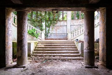 Verlaten en Begroeide Trap. van Roman Robroek