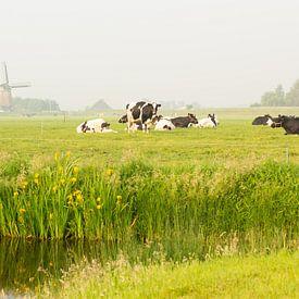 Hollands polderlandschap von Marijke van Eijkeren