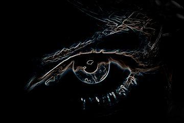 Je oog (2) van Norbert Sülzner