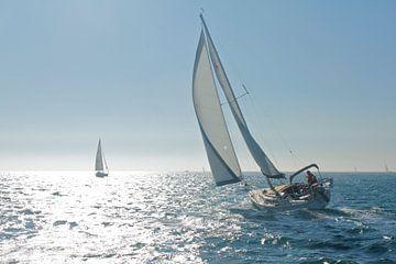 Navigation sur l'océan Pacifique sur Inge Teunissen