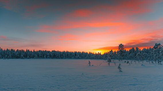 Zweden landschap