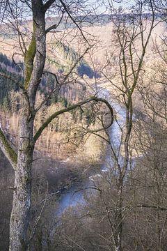 Uitzicht op de rivier van Nynke Nicolai
