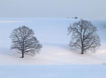 Winter 01 von