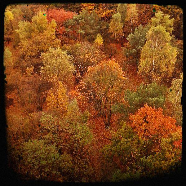 Herfst II van Kuba Bartyński