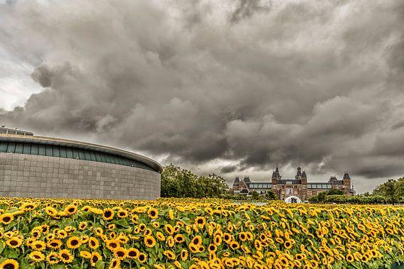 Zonnebloemen en het Rijksmuseum in Amsterdam van Don Fonzarelli