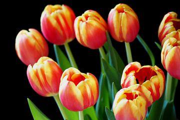 Bos roodgele tulpen von Gerrit Veldman