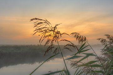 Zonsopkomst mistige ochtend van Rick van de Kraats