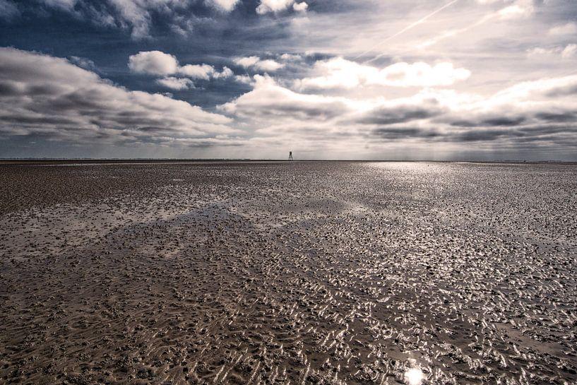 Waddenzee bij laag water. van Brian Morgan