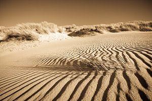 Het helmgras en het zand