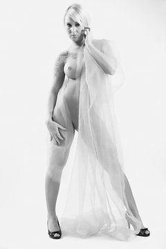 Nude van Falko Follert