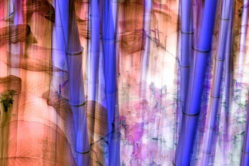 Gebloemde bamboe