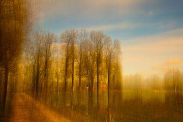 Boerderij aan landweg van Mark Scheper