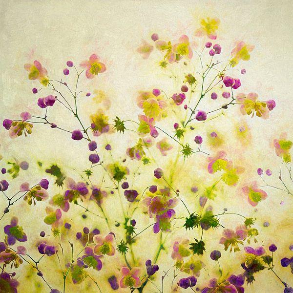 flowery III von Andreas Wemmje