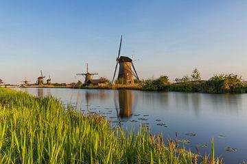 De molens van Kinderdijk tijdens een zonnige avond van Paul Weekers Fotografie