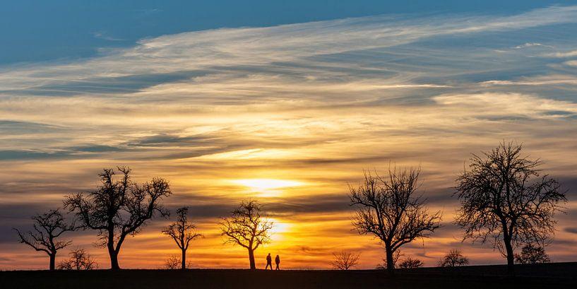Spaziergang im Abendrot von Uwe Ulrich Grün