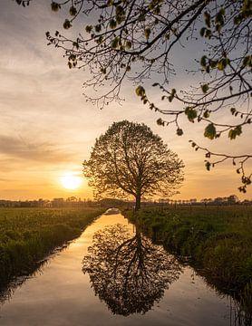 Lente en zonsondergang van Wouter Bos