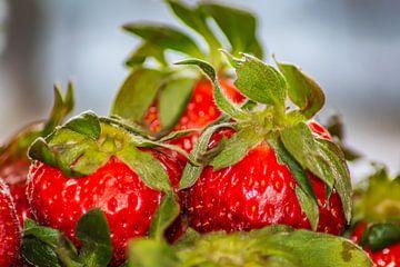 Aardbeien van Michael Nägele