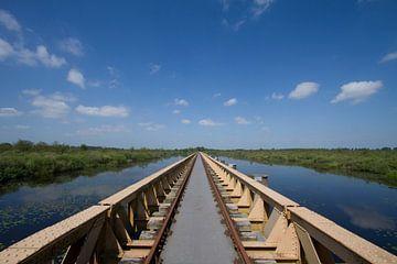 Nussbrunnen-Brücke ('s-Hertogenbosch) von Rob van Eerd