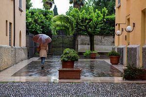 Regen van Jacques Jullens