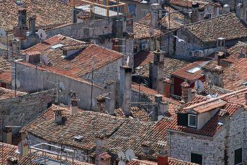 Een wirwar van rood gekleurde daken in een zuidelijk havenstadje in Istrië. von Gert van Santen