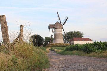 oude molen van Denderwindeke van Joran Keij