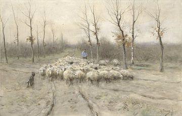 Troupeau de moutons sur la lande près de Laren, Anton Mauve sur