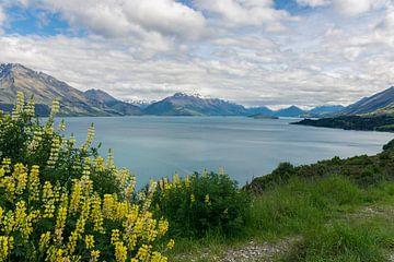 Meer met bergen en bloemen in Nieuw-Zeeland van Linda Schouw