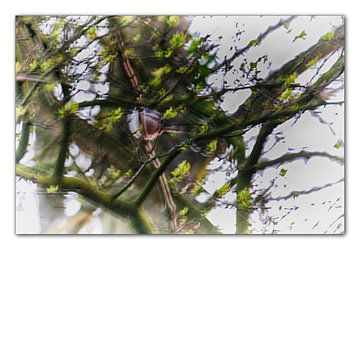 lente kunst van Erik Reijnders