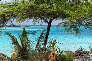pos chiquito aruba