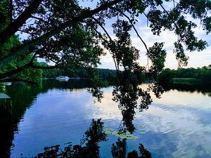Lake reflection van Graham De With