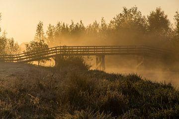 Zonsopgang met mist van Neil Kampherbeek