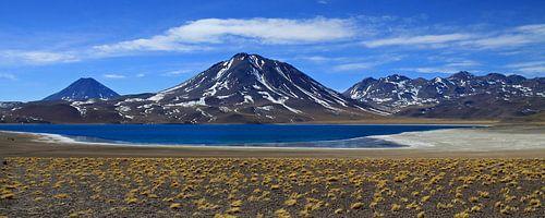 Andes panorama von Antwan Janssen