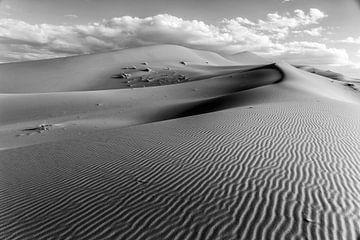Unberührte Wüste und die Landschaft der Sanddünen bei Sonnenaufgang, Afrika von Tjeerd Kruse