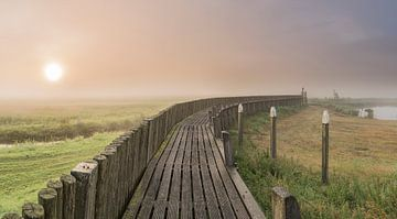 Aufkommenden Nebel                                     von Jan Koppelaar
