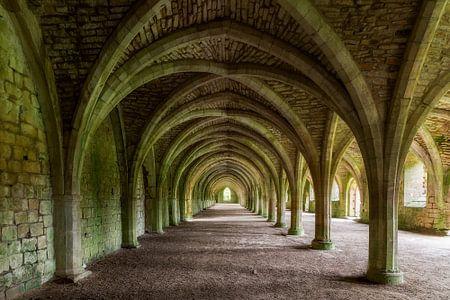 Fountains Abbey von Truus Nijland