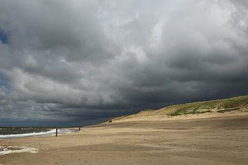 Strand sur Hans van Otterloo