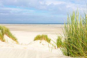 Strand van Terschelling vanuit de duinen