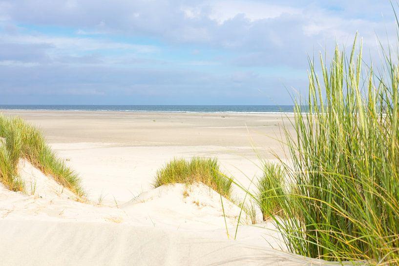 Strand van Terschelling vanuit de duinen van Sjoerd van der Wal
