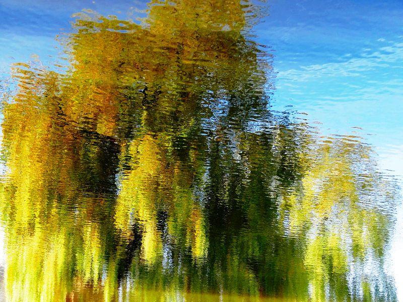 Tree Magic 77 van MoArt (Maurice Heuts)