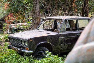 Verlaten Auto's in het Veld. van Roman Robroek