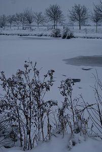 Winter tafereel van Kim Koppenol